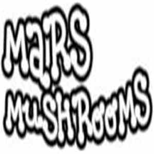 Mars Mushrooms - Live At Weisses Ross, Immeldorf, Germany On 2014-12-26 (December 26, 2014) download free